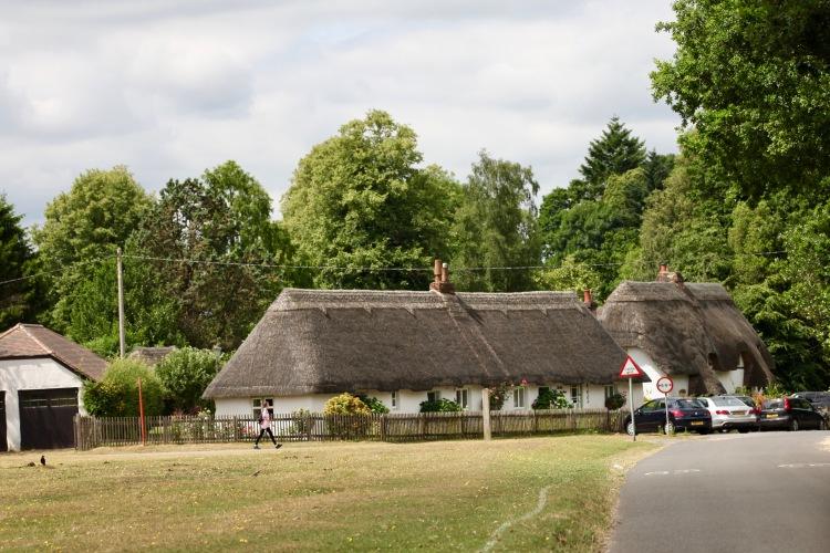 Hale village green 2