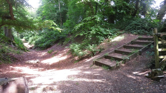 Steps to Buckland Hill Fort central plateau