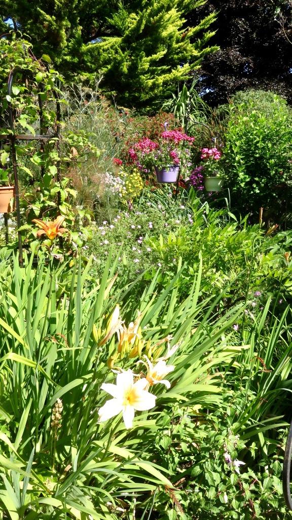 Garden view across Kitchen Bed