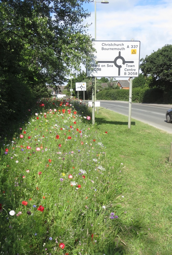 Wildflower meadow location sign