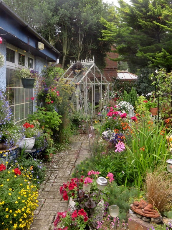 Greenhouse installation 2