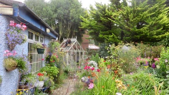 Greenhouse installation 3