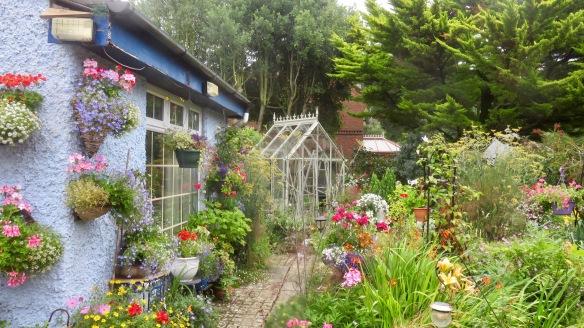 Greenhouse installation 5