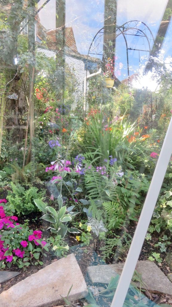 View through greenhouse window 3