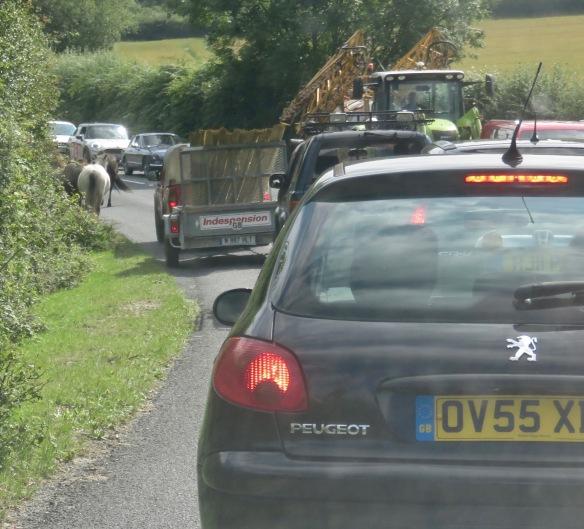 Ponies in traffic 3