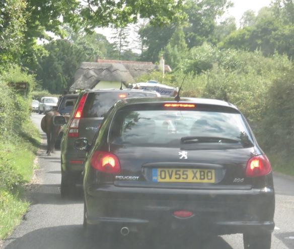 Ponies in traffic 8