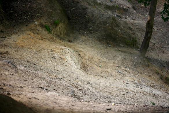 Sledge run 3