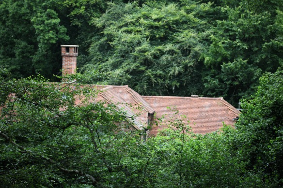 Buckland Wood roof