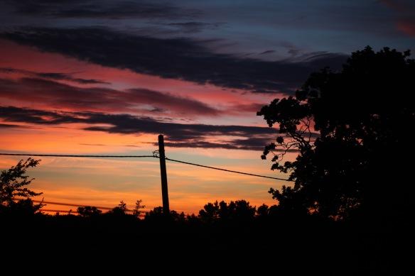 Dawn 2