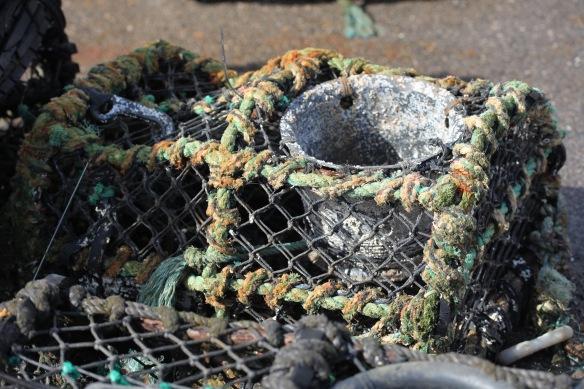Crab pot 1