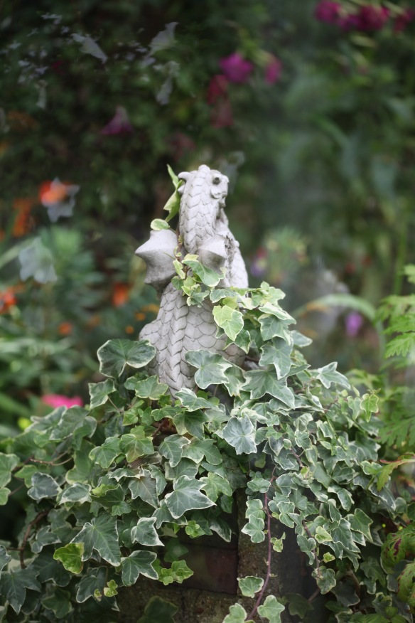 Dragon and ivy through greenhouse window