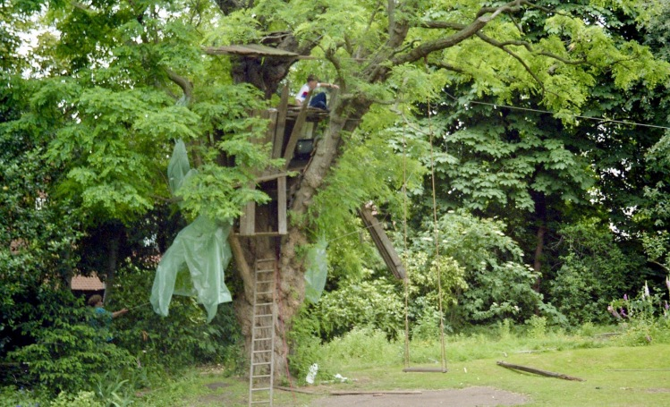 Building Tree House 4