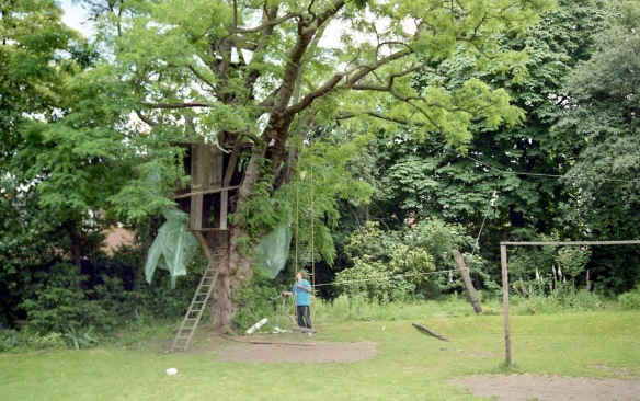 Building Tree House 7