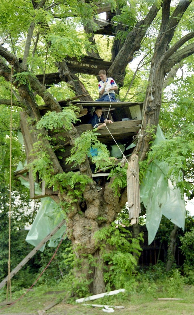 Building Tree House 9
