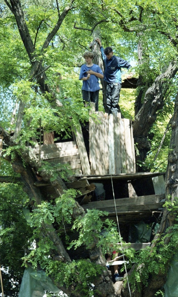 Building Tree House 27