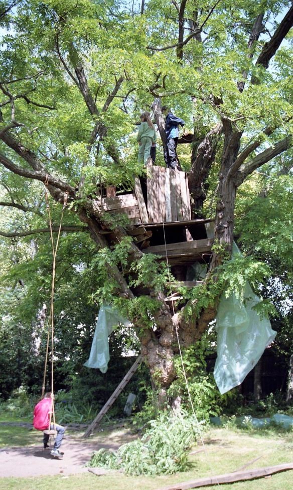 Building Tree House 28