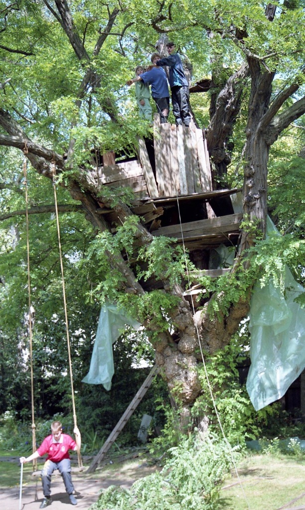 Building Tree House 29