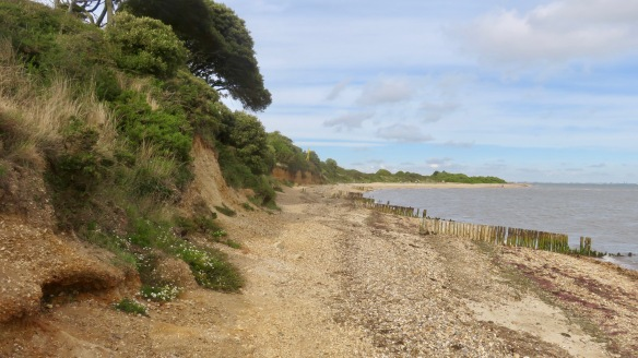 Cliffs at Lepe 1