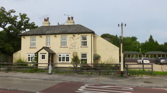 The Filly Inn 1