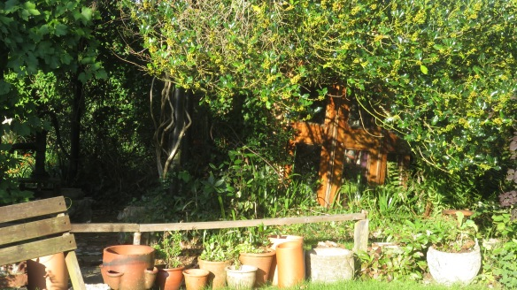 Geoff & Jackie garden