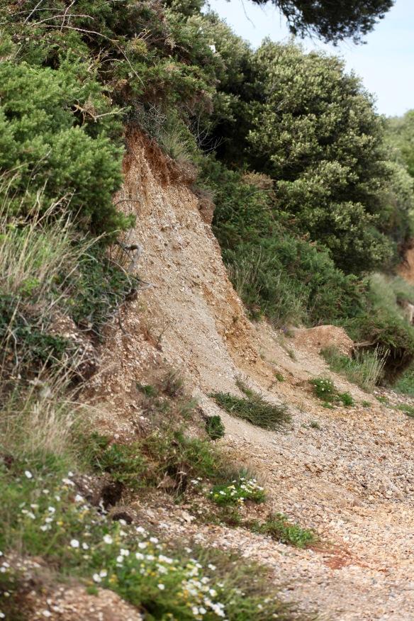 Cliffs at Lepe 3