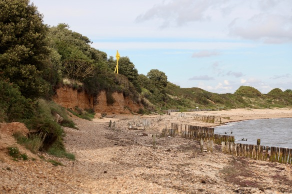 Cliffs at Lepe 4