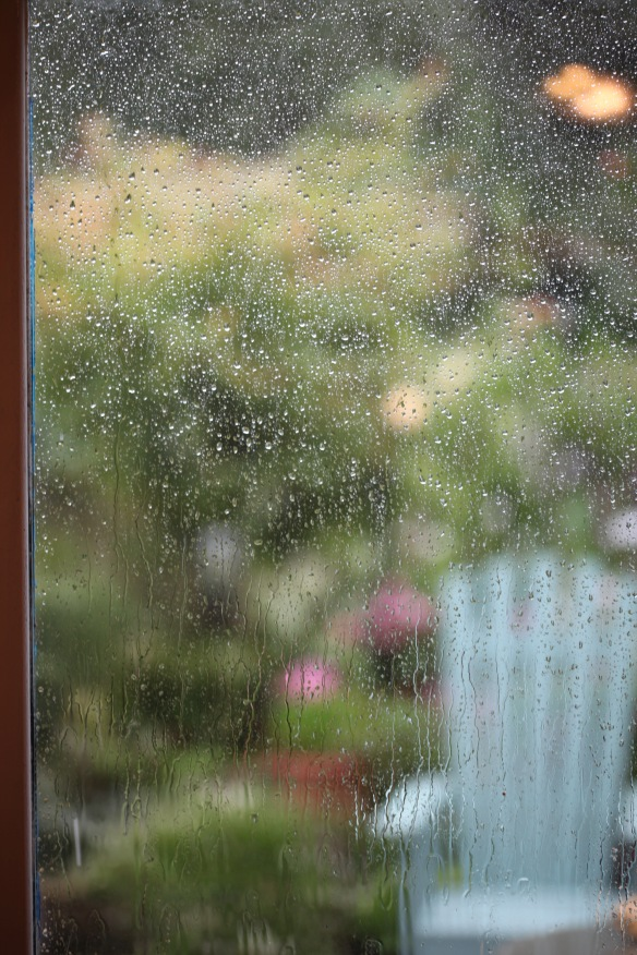 Rain on French windows 1
