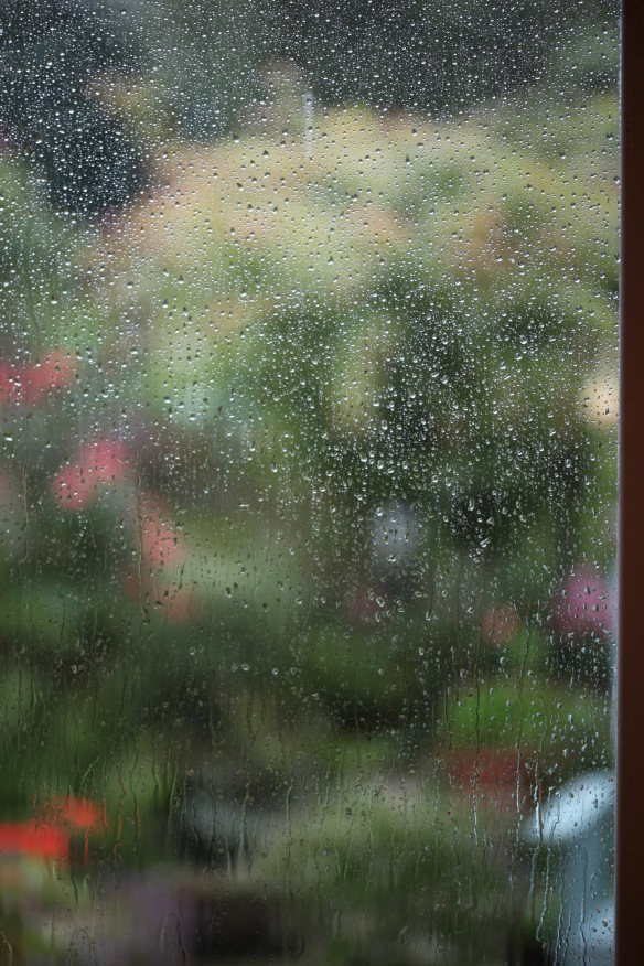Rain on French windows 2