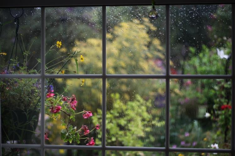 Rain on kitchen window