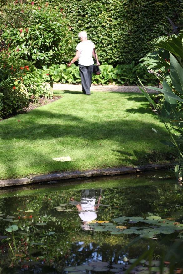 Willows garden 4