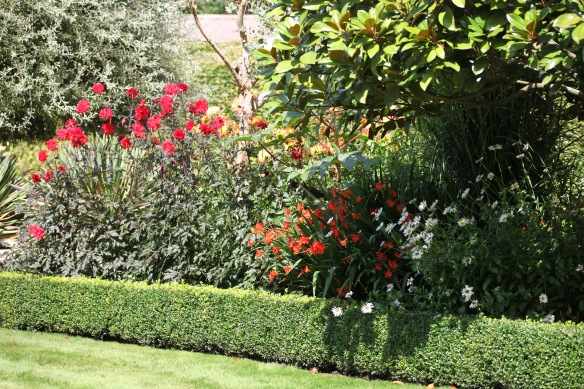 Herbaceous border 2