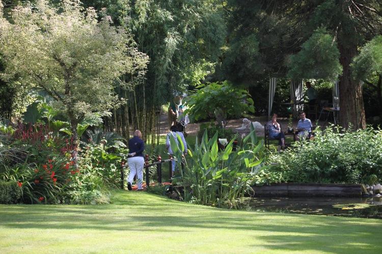 Willows garden 7
