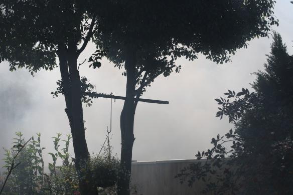 Smoky garden 1