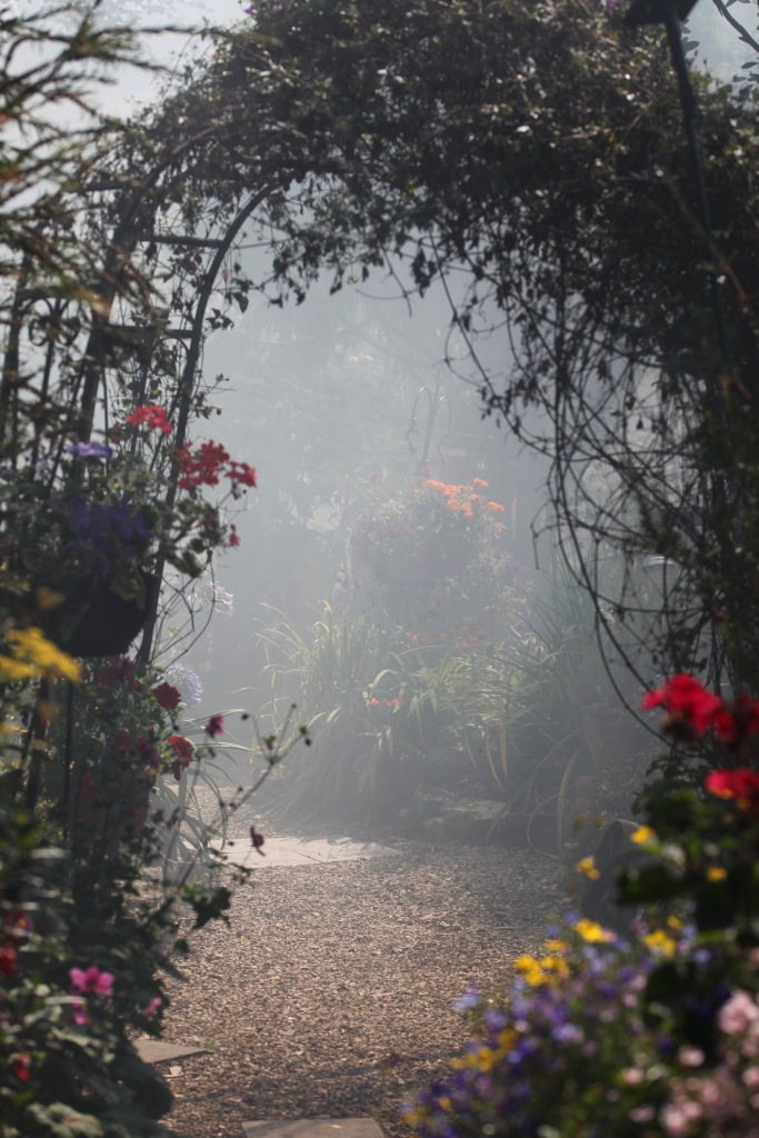 Smoky garden 4