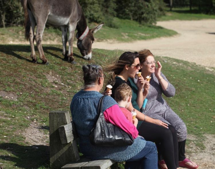 Jackie, Jasper, Danni, Elizabeth, ice creams, and donkey