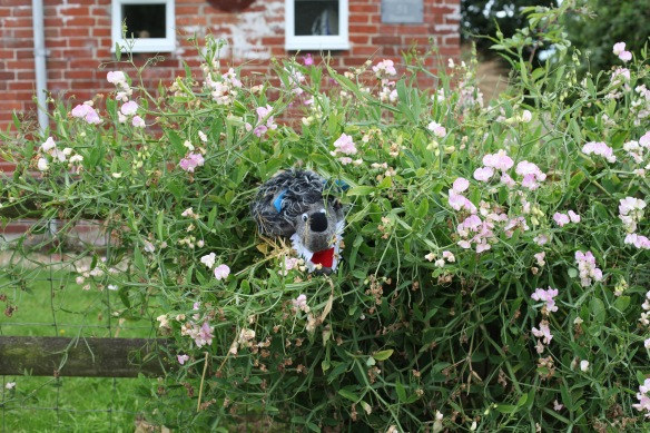 Bisterne Scarecrow Festival 37