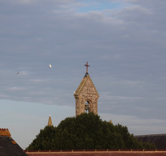 Doves flying round belfry 4