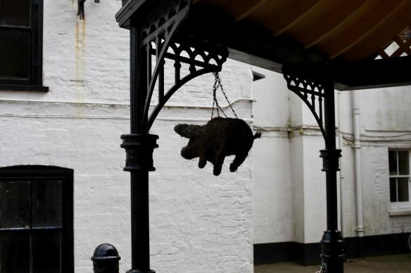 Pig dangling