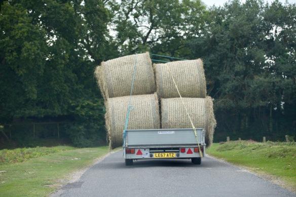 Hay truck