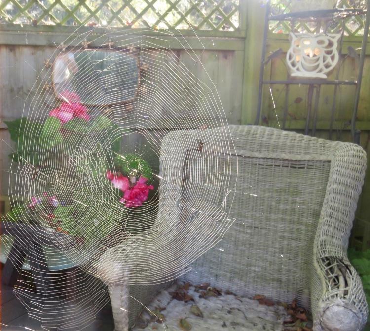 Spiders' webs – Version 2