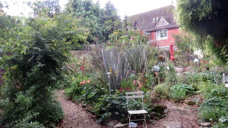 South end of garden