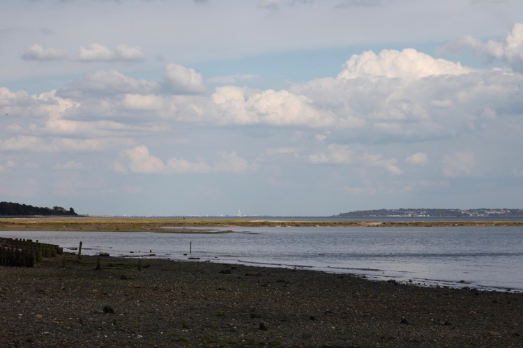 Shorescape 1