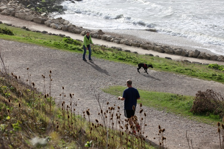 Jogger and dog walker 1