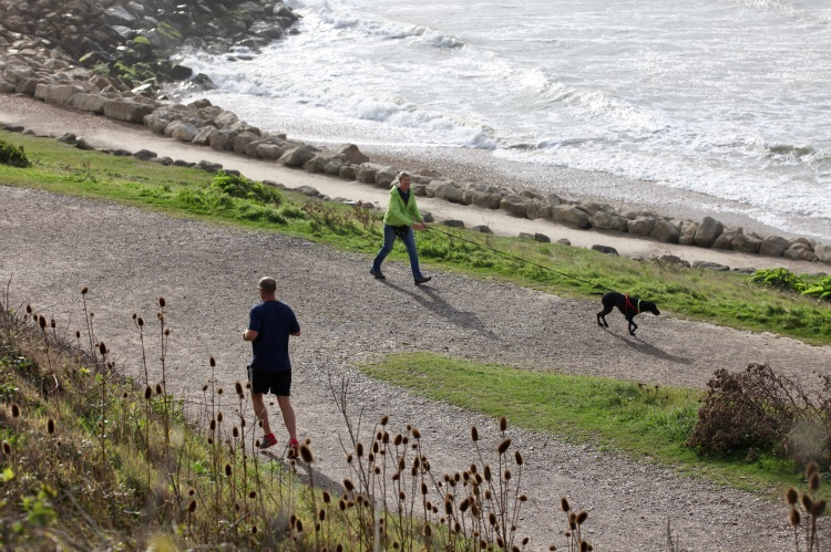 Jogger and dog walker 2