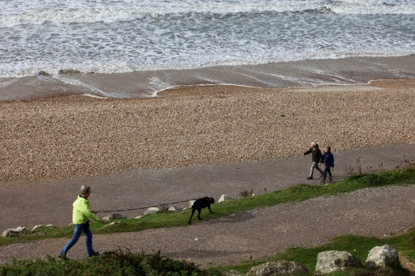 Walkers, dog, shore