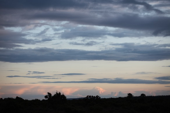 Cloudscape 12