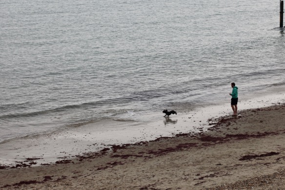 Man and dog on beach 1