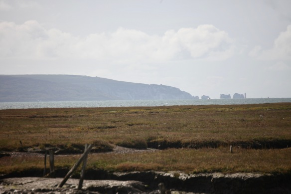 Isle of Wight and Needles from Tanner's Lane