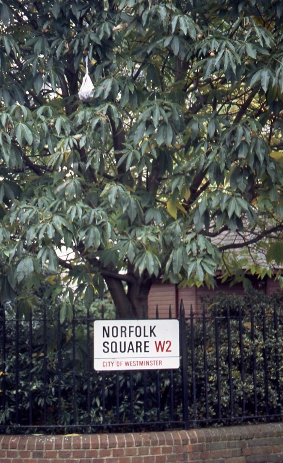 Norfolk Square W2 11.04