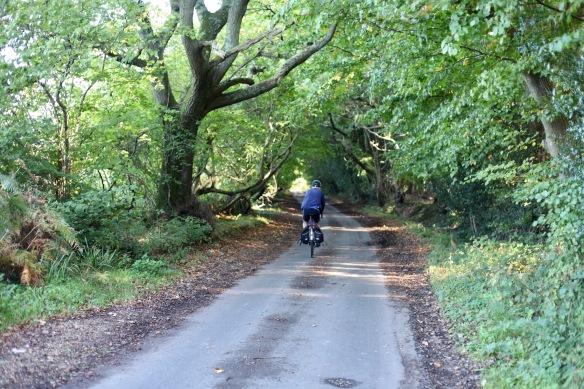 Cyclist on Charles's Lane 1